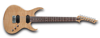 7 string electric guitar